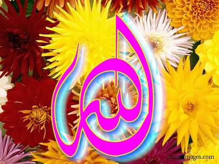Free Orkut and My Space allah names Graphics Glitters