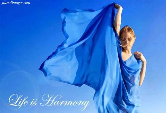 Life is harmony